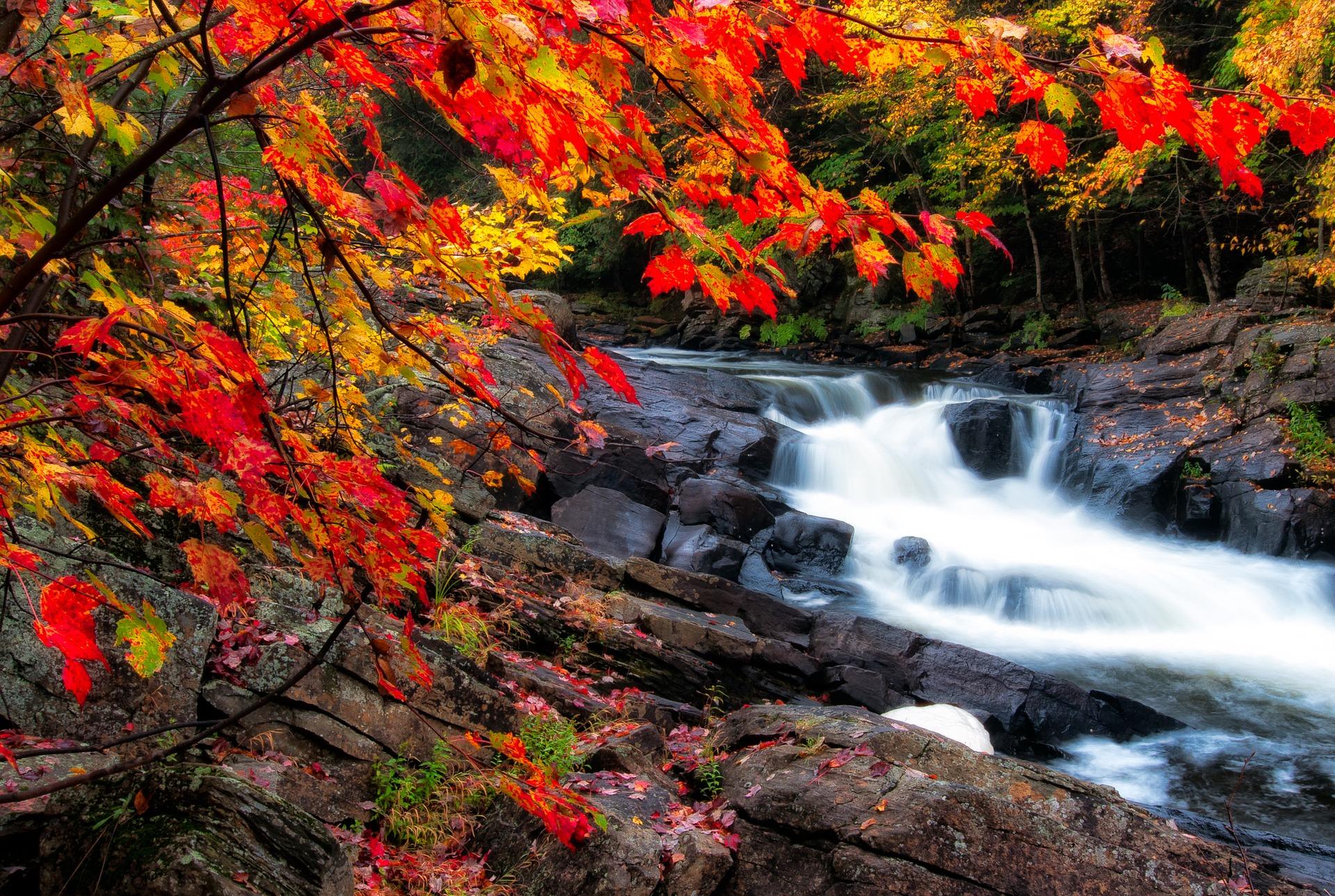 Cachoeira – Foto
